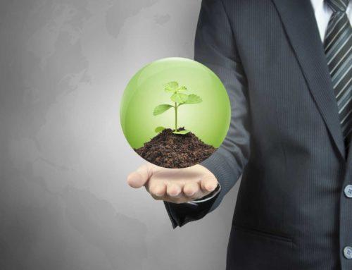 Die erfolgreichsten Management-Prinzipien
